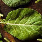 Couve – Cura Natural Para Artrite e Úlcera de Estômago