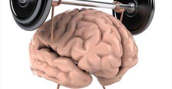 Importância da Atividade Física Para o Desempenho do Cérebro
